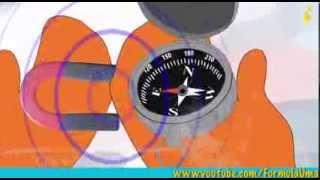 Почему компас показывает на север? (умные мультфильмы для детей