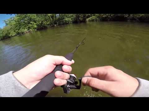 Creek fishing in the little pigeon river sevierville Tennessee