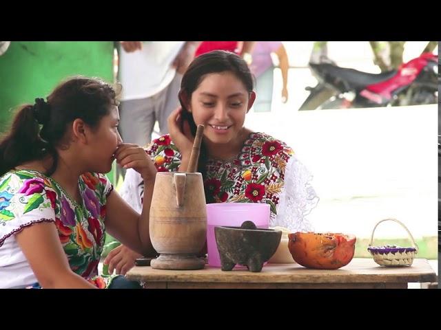 Video de la Fiesta de Semillas Nativas 2019