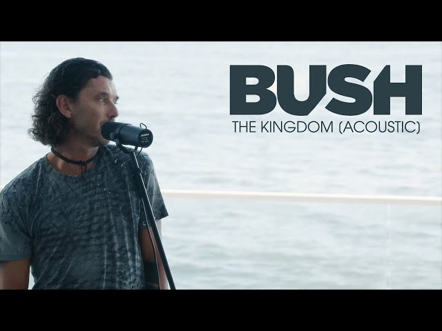 BUSH - The Kingdom [Acoustic]