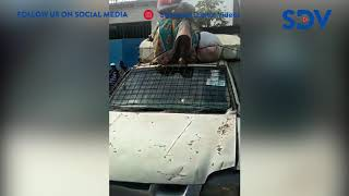 frustrated-woman-climbs-on-top-of-city-council-vehicle-to-protest-assault-by-kanjos