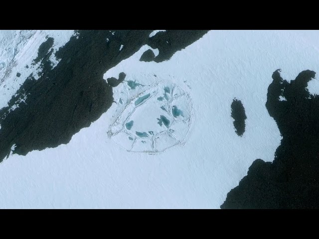 Did Anyone Else Notice This Strange Shape on the Antarctic Ice?