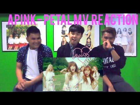 Apink(에이핑크) - Petal(꽃잎점) MV REACTION (FUNNY FANBOYS)