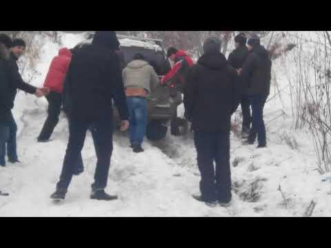 Дромчане шумною толпою толкали в гору либертос))