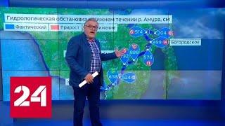 Смотреть видео Тайфун на выборах: прогноз для Дальнего Востока - Россия 24 онлайн