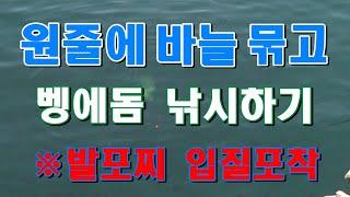 [fishing] 벵에돔 낚시 [발포찌 입질포착!?] …