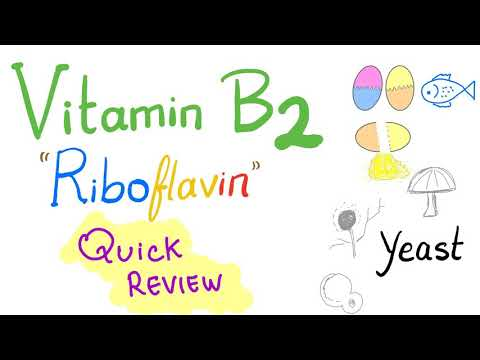 Vitamin B2 Quick Review
