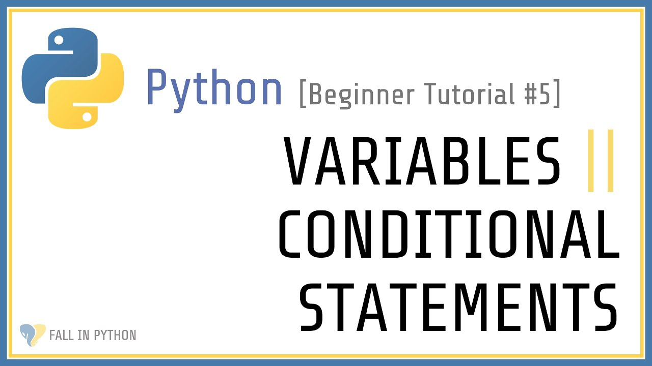 Variables and Conditional Statements Exercise - Beginner Python Tutorial #5