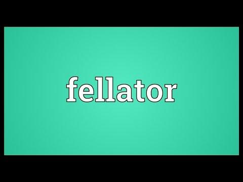 Header of fellator