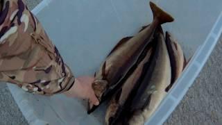 Рибалка, день 2-й)) трофеїв немає.(Fishing in Ireland) Today there is no fish.