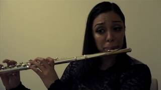 Undecided Flute Cover