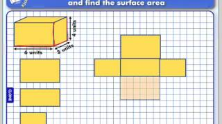 Drawing Nets and using Nets to Calculate Surface Area