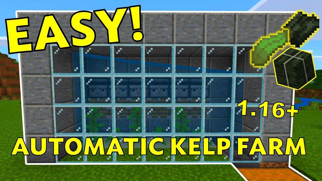 EASIEST Automatic Kelp Farm Tutorial: Minecraft 11.111+