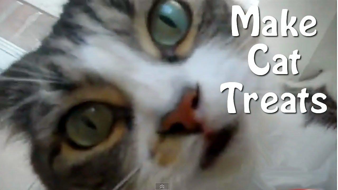 cat help reddit