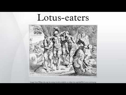 Lotus eaters youtube lotus eaters mightylinksfo
