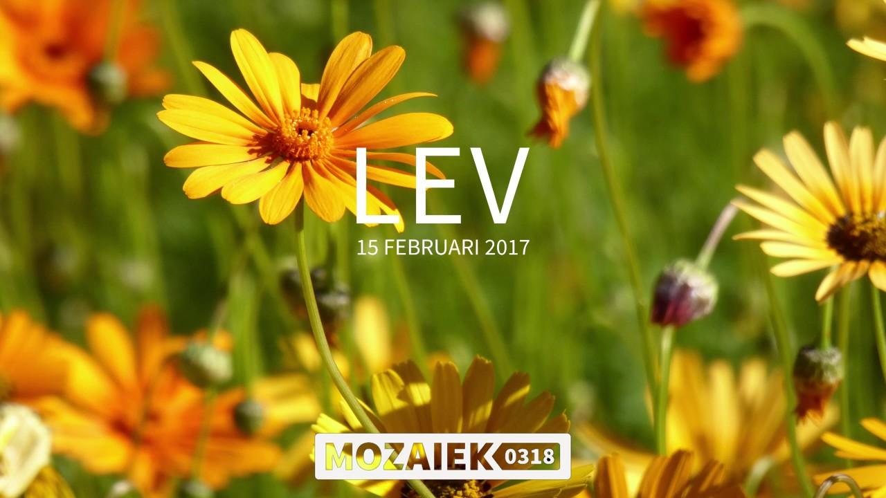 LEV-avond 15/02/2017 - Discipelschap en Gerechtigheid - Deel 1 - Tiemen Westerduin