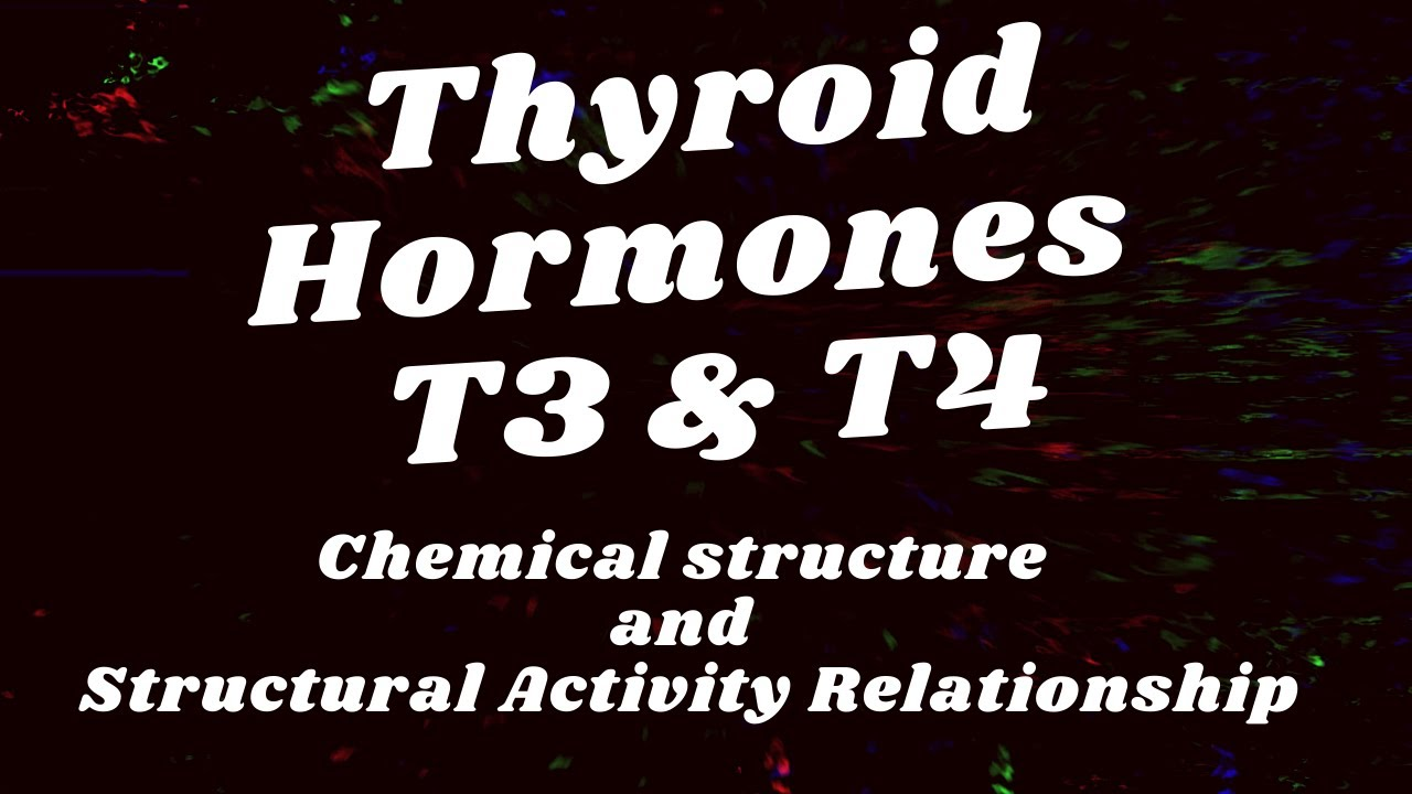 Thyroid Hormones T3 T4 Triiodothyronine Thyroxine Youtube