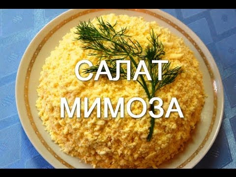 Салаты с Knorr рецепты с фото Простые рекомендации по