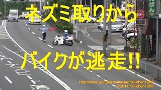 白バイ 緊急走行2連発!! スピード違反バイクがUターンして逃走する瞬間!!