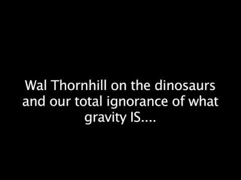 Wal Thornhill: Proto-Saturn & Comet Venus  Hqdefault