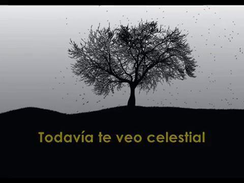 Coldplay - Everglow (Subtitulado en Español)