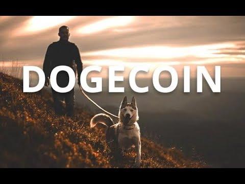 Криптовалюта Dogecoin. Основные достоинства