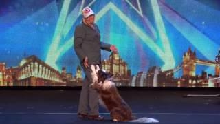 Собака Невероятно проявила себя на сцене! Шоу талантов...