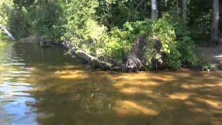 видео Пестовское водохранилище: пляжный отдых, рыбалка