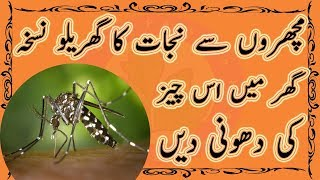 Mosquito Killer Homemade - Mosquito Killer Home Remedy - Best Remedy Used At Your Room Just A Mint