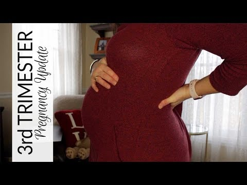 Pregnancy Update   3rd Trimester