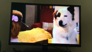 Dog With A Blog - Stan Falls In Love (promo)