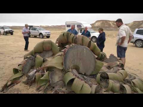 Angola Toer Episode 1 Video