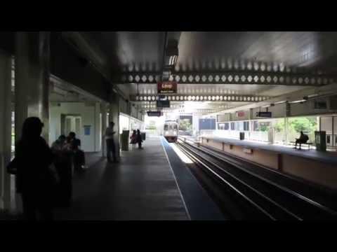 "CTA ""L"" Trains: Pink Line Trains at Polk Station"