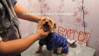 Одежда для собак с Алиэкспресс обзор распаковки посылки примерка