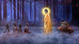 Bạn Quá May Mắn Vì Có Duyên Phước Được Nghe Những Lời Dạy Cuối Cùng Của Đức Phật Để Được May Mắn