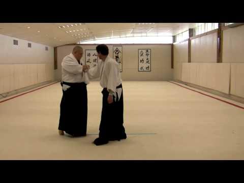 Merritt Steven's Aikido System - 3