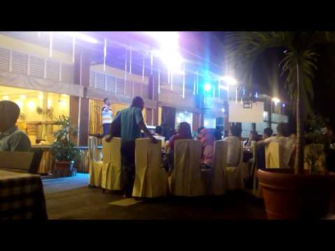 Live Music at Harbour Bay Seafood Restaurant