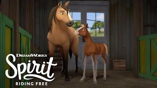 Spirit Teaches Governor Tricks   SPIRIT RIDING FREE thumbnail
