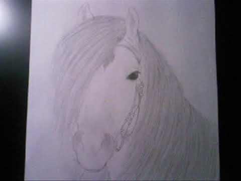 Verwonderlijk mijn (paarden) tekeningen - YouTube II-49
