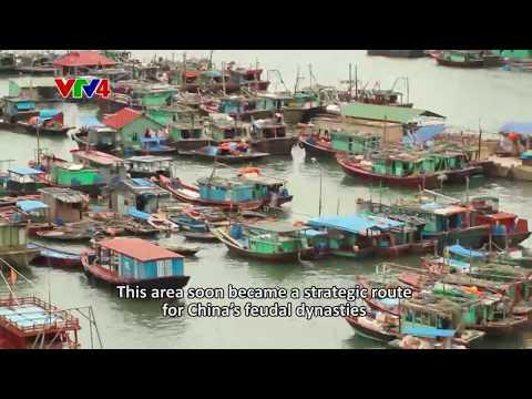 Life Mosaics - Trading ports in Northern Vietnam
