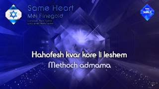 Watch Mei Finegold Same Heart video