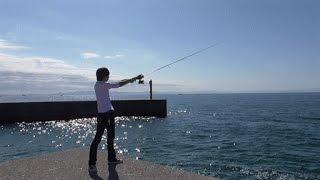 【かねこソロ】夕飯釣りにいったら豪華な刺身盛りできた