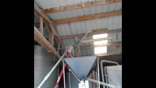 Concasseur de céréales avec réservoir en dessous