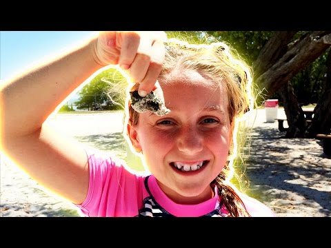 🌴 FLORIDA KEYS VACATION 🐠FISHING IN THE FLORIDA KEYS!🐬