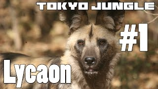 Tokyo Jungle: Lycaon Survive over 100 years  Part 1 of 4
