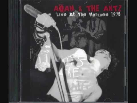 adam and the antz-it doesnt matter live mp3