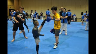 Taekwondo tactical & technical development with young athletes.