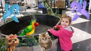 магазин для животных / pet store