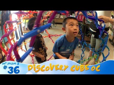 Discovery Cube OC, Santa Ana: Look Who's Traveling