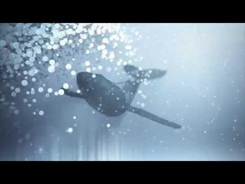 MESTIS - Polysemy (November 6th)